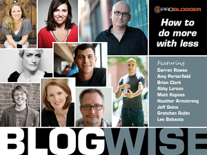 BlogWise 300x225 BlogWise eBook Review